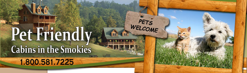 Pet Friendly Cabins in the Smoky Mountains Pigeon Forge